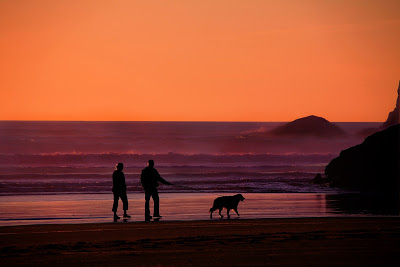 retired couple walking on a beach covered in the gold light of a sunset