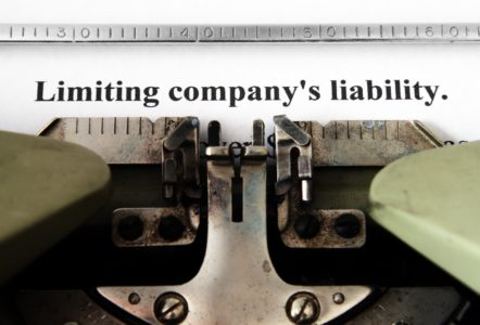 LLC, Limited Liability Protection, Limited Liability Company